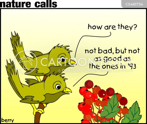 berry cartoon