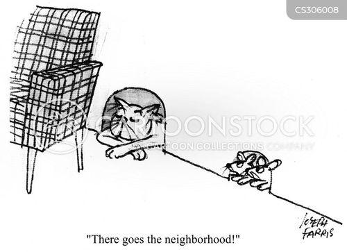 new neighbour cartoon