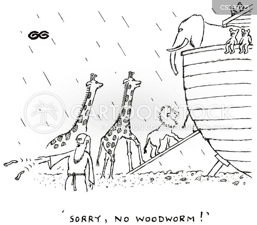 wooden boats cartoon