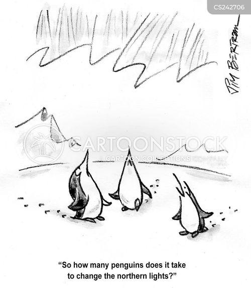 icey cartoon