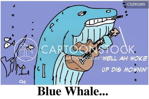 blue whales cartoon