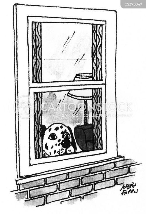dalmation cartoon
