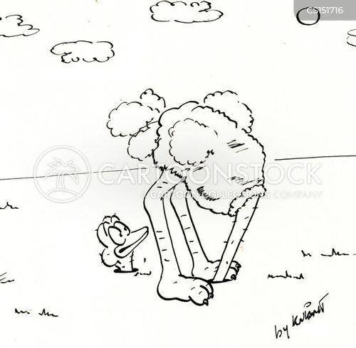 head in sand cartoon