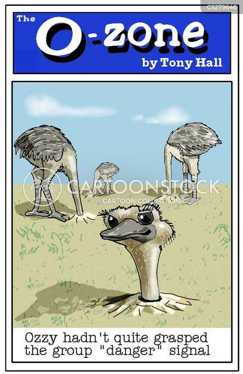 bury your head in the sand cartoon