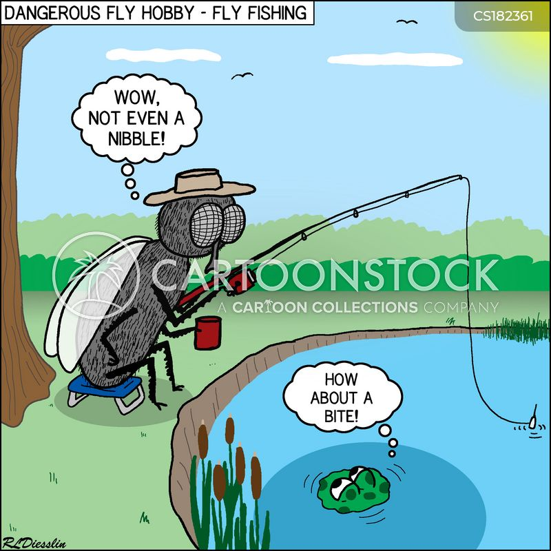 fly fishing cartoon