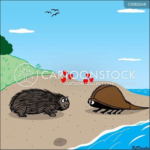 porcupines cartoon