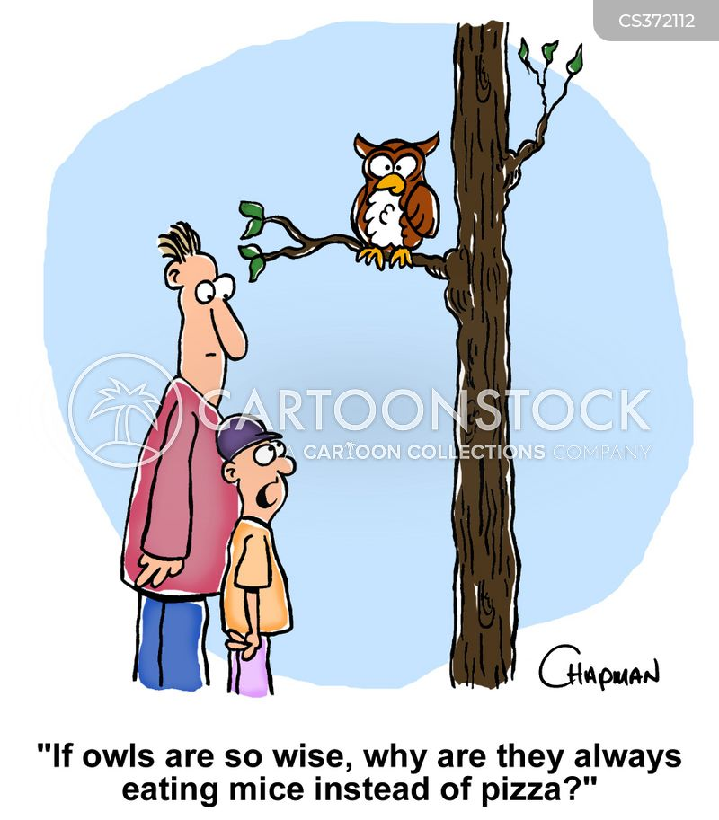 wise bird cartoon