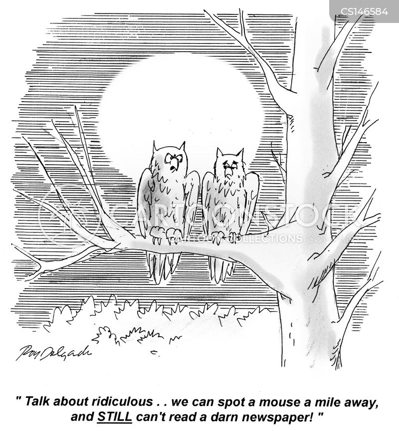 nocturnal cartoon