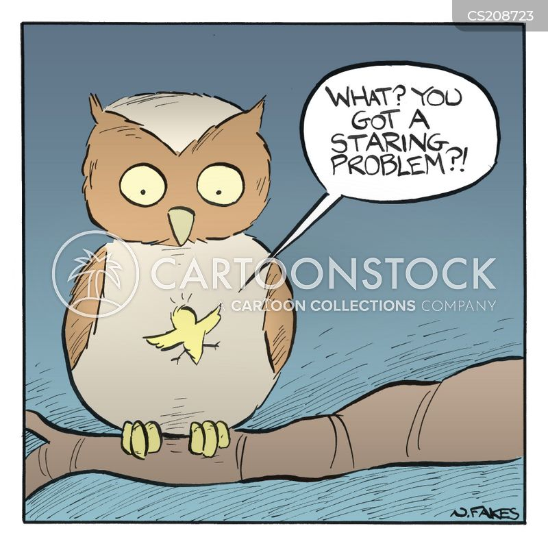 night owls cartoon