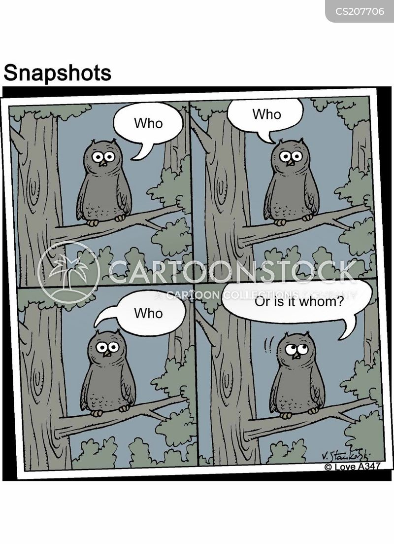 wild birds cartoon