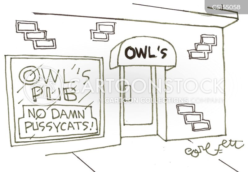 owl and pussycat cartoon