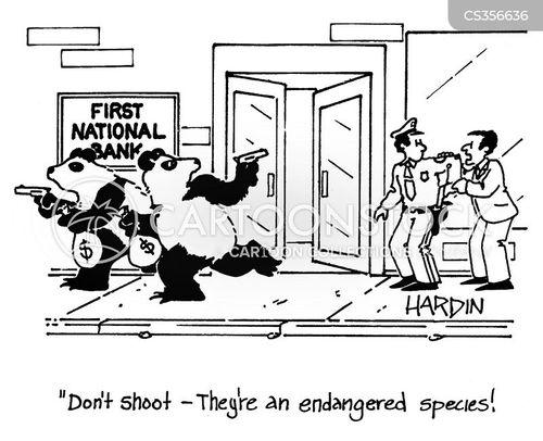 panda bears cartoon