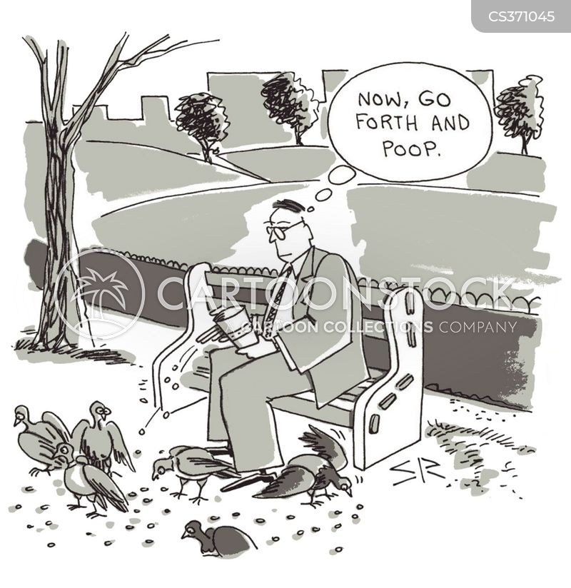 bird foods cartoon