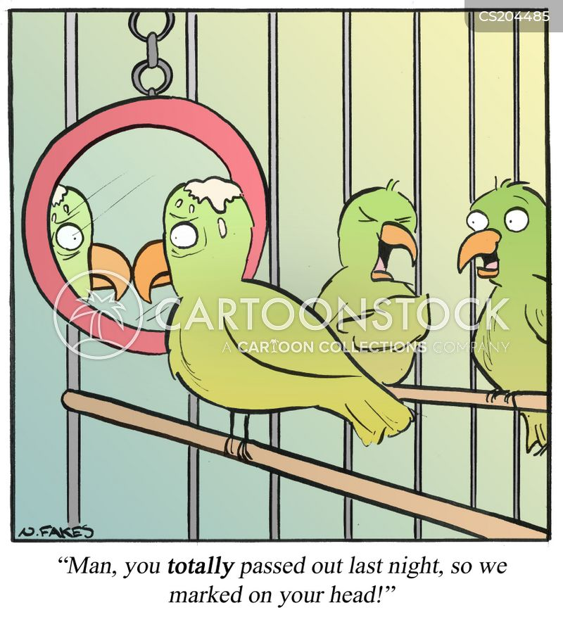 bird cages cartoon