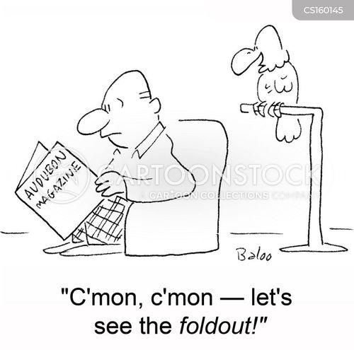 foldouts cartoon