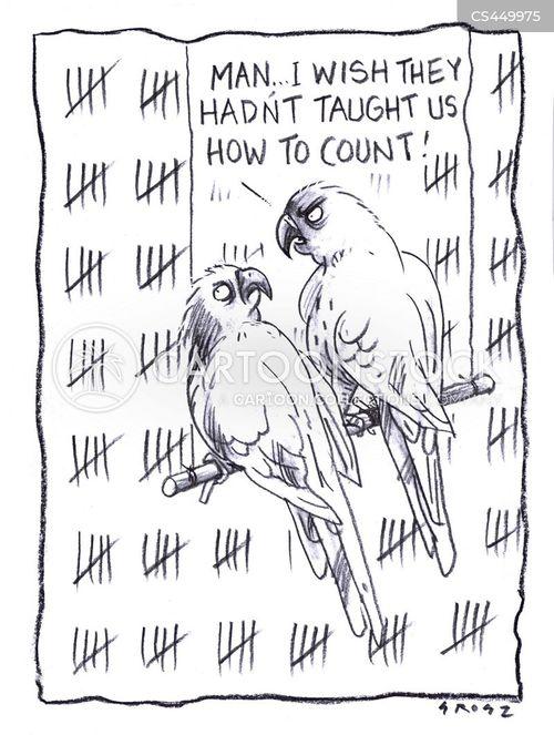 tallying cartoon