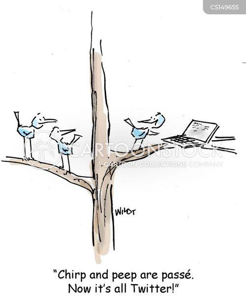 chirp cartoon