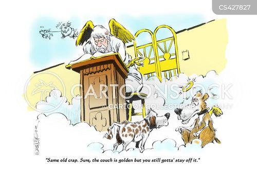 house rule cartoon