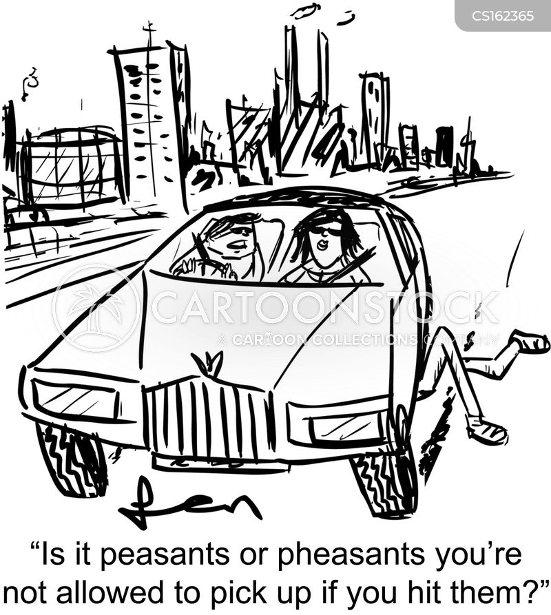 pheasant cartoon