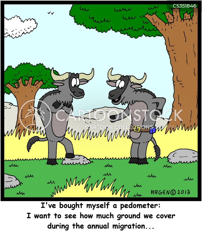 Wildebeest cartoons, Wildebeest cartoon, funny, Wildebeest picture, Wildebeest pictures, Wildebeest image, Wildebeest images, Wildebeest illustration, Wildebeest illustrations