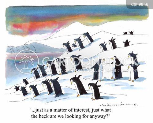 antarctic cartoon