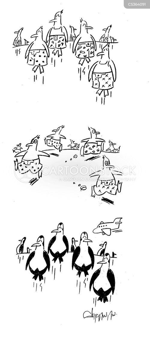 penguin suit cartoon