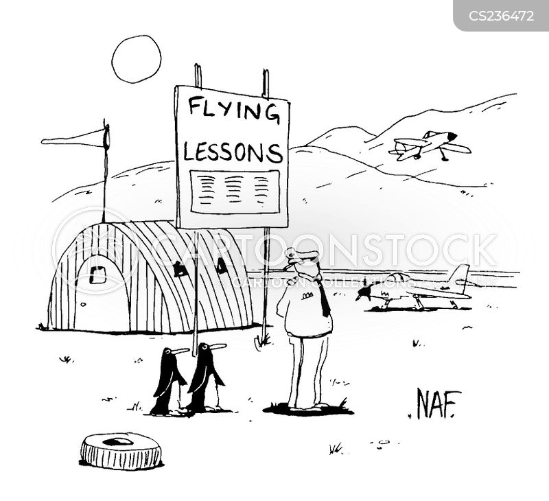 flying lessons cartoon