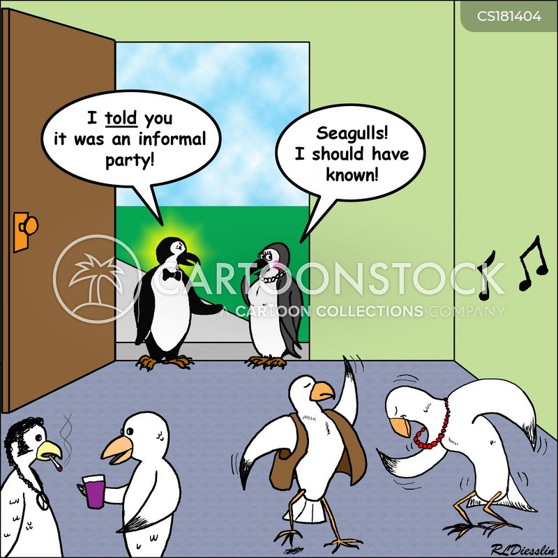 seagulls cartoon