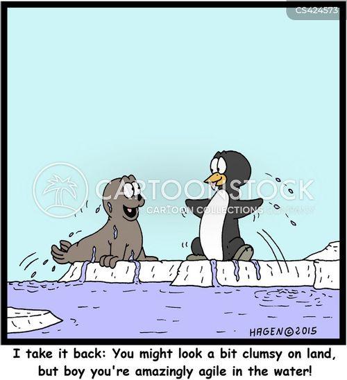 aquatic bird cartoon