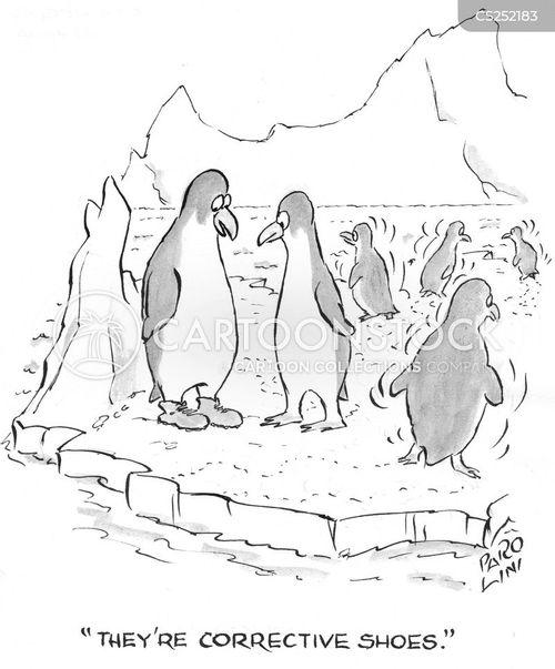 waddle cartoon