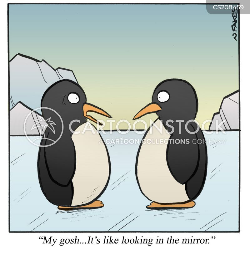 mirror images cartoon