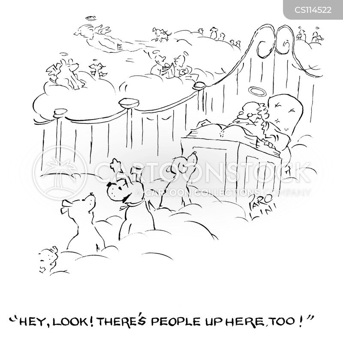 dead pets cartoon
