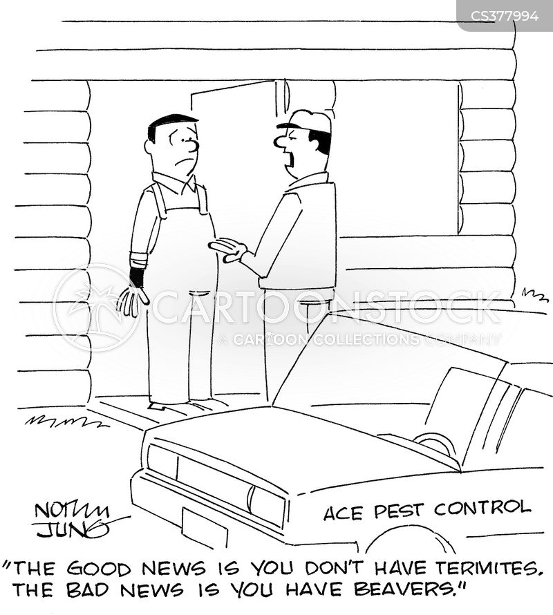 Building Material cartoon 2 of 7