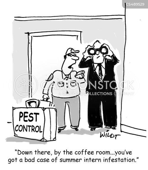 summer interns cartoon