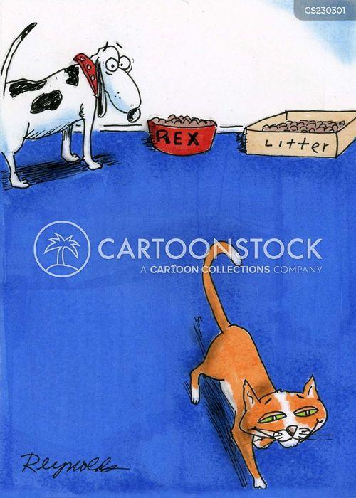cat litter cartoon