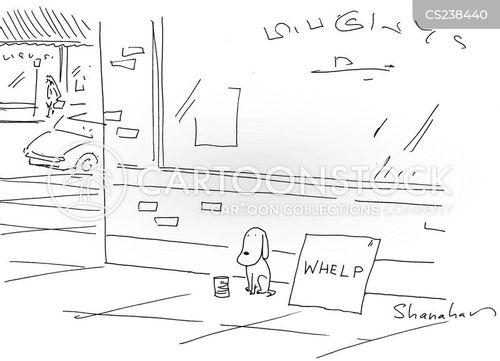 pitiful cartoon