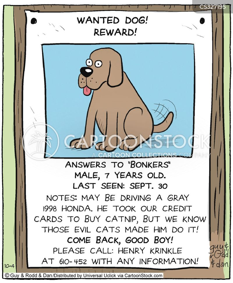 Missing Pet Cartoons and Comics funny pictures from CartoonStock – Funny Missing Person Poster
