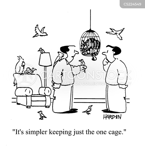 simple solution cartoon