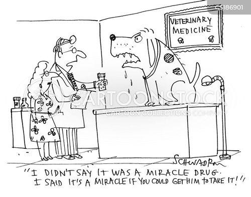 beware of the dog cartoon