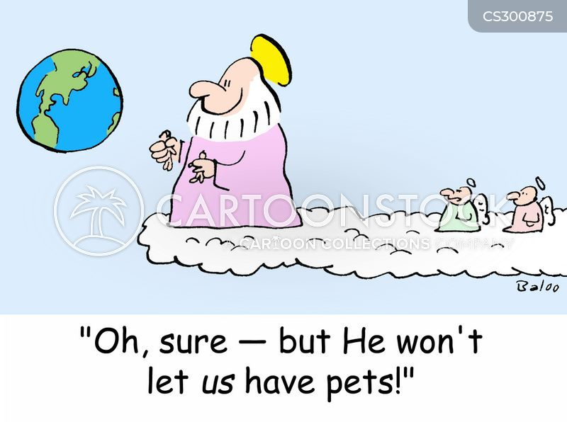 new pet cartoon