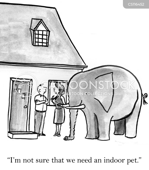 exotic animal cartoon