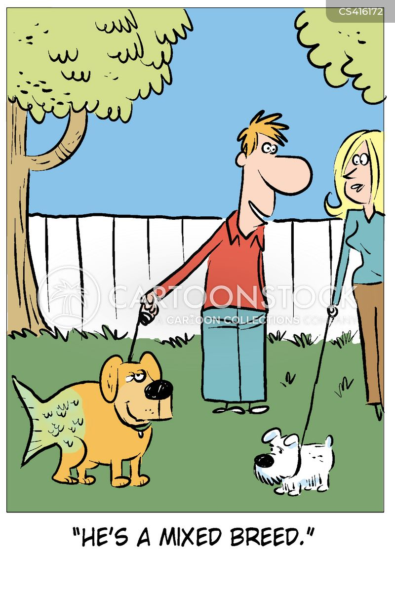 crossbreeds cartoon
