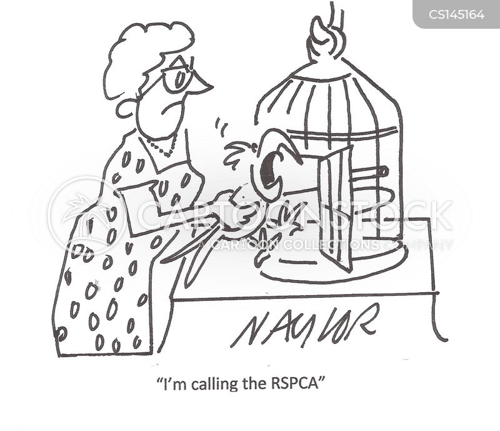 rspca cartoon