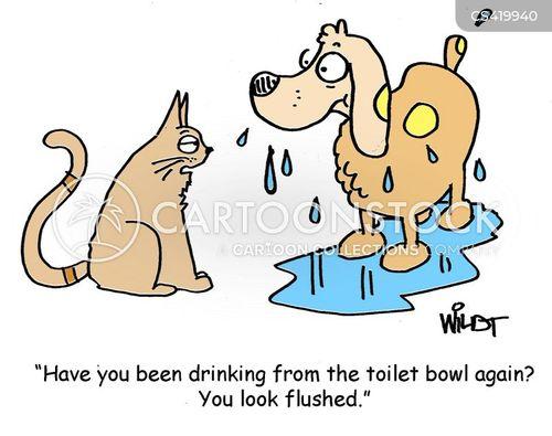 toilet water cartoon