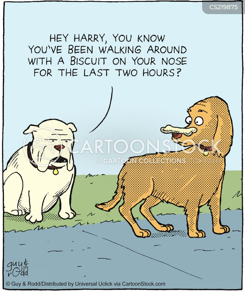 dog treat cartoon