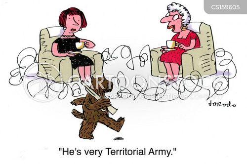 territorial army cartoon