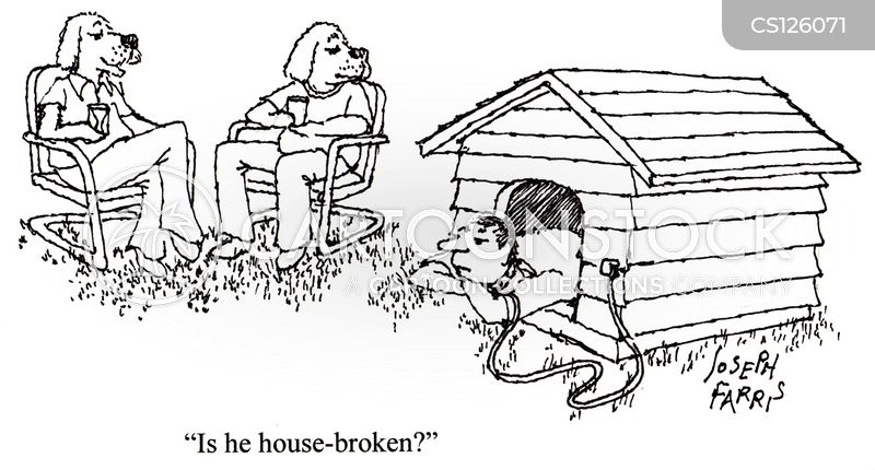 housebroken cartoon