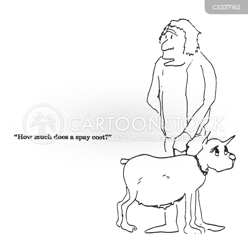spaded cartoon