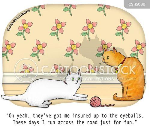 insurance payouts cartoon