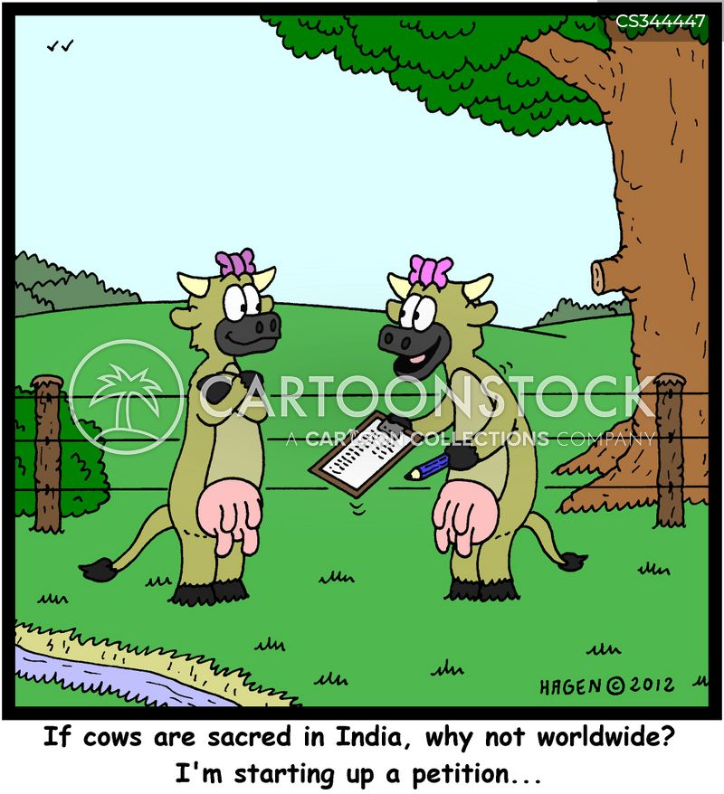 sacred cows cartoon
